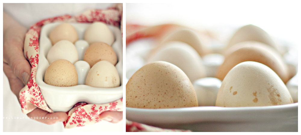 Baking 101: Get Great Baking Results w/ Any egg, Duck, Chicken, Pheasant….
